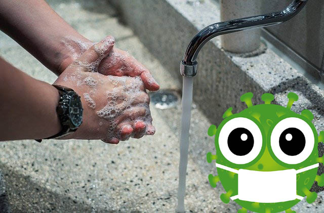 How to Wash Your Hands Properly and Stay Virus Free!