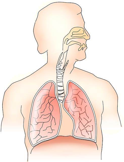 Tratamento para sua sinusite