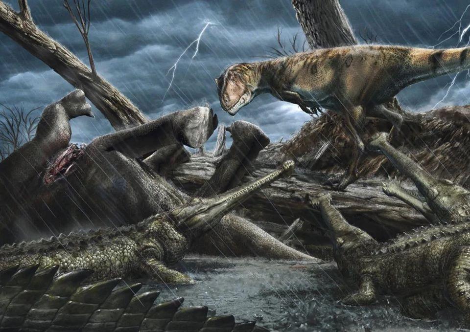 gigantesco dinossauro predador Carcharodontosaurus
