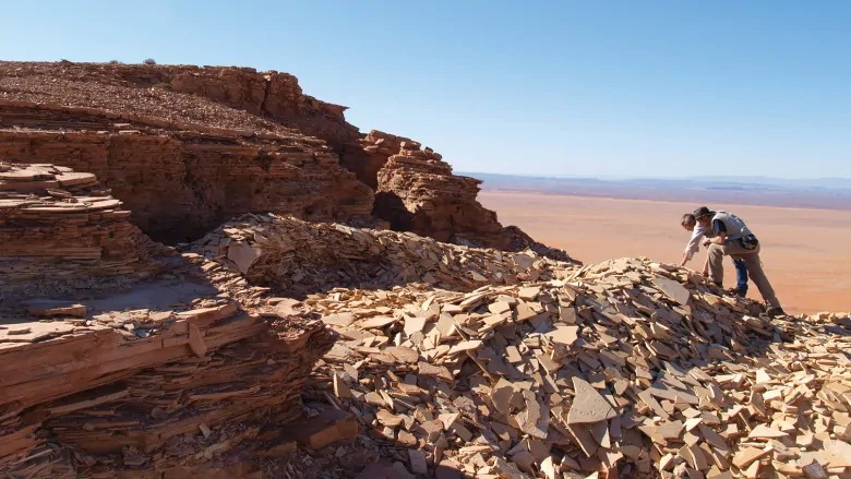 Pesquisadores inspecionam o calcário do Grupo Kem Kem (Ibrahim et al., ZooKeys, 2020)