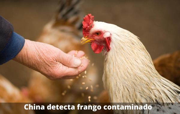 China-detecta-frango-contaminado