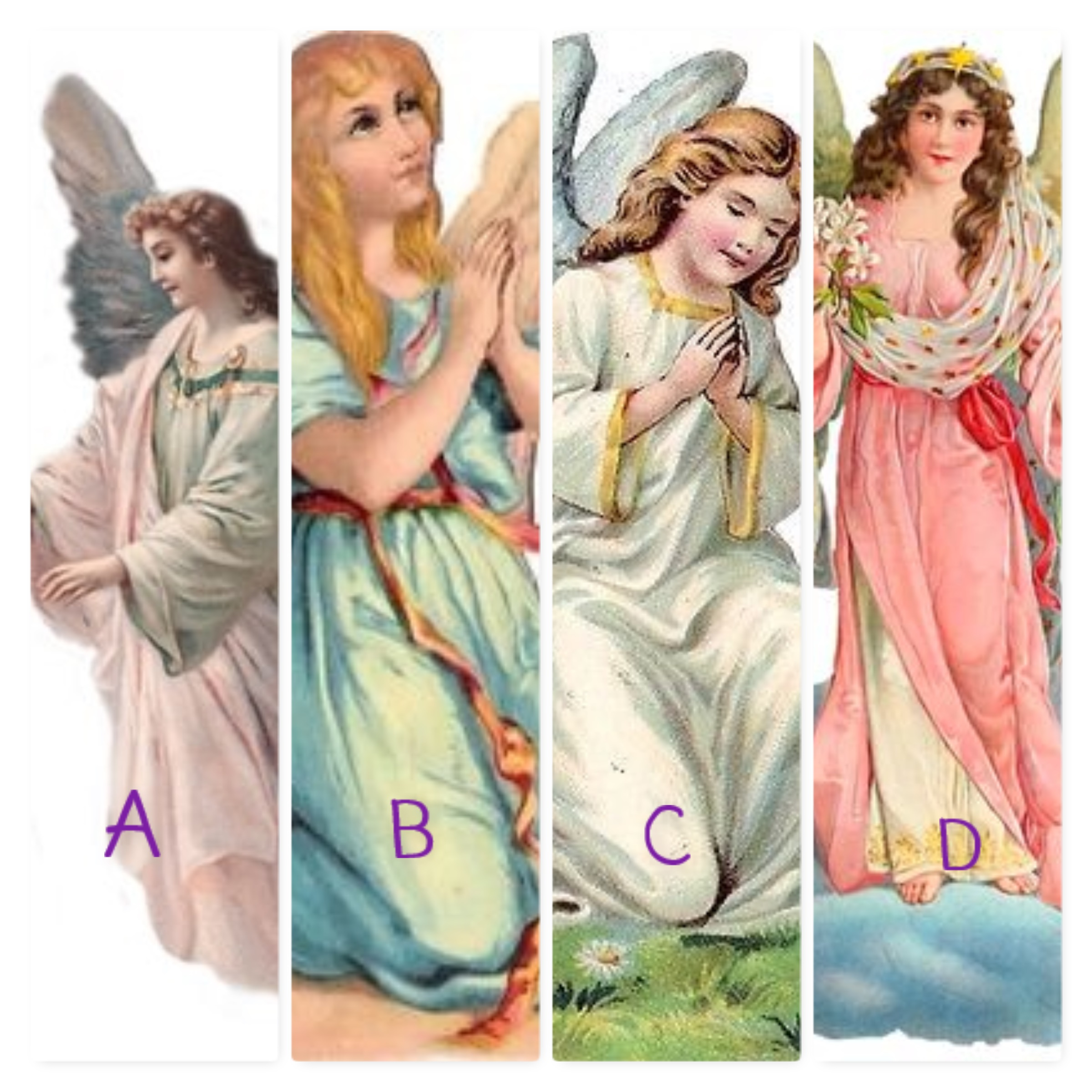 Escolha-o-seu-anjo
